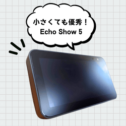 about-echoshow5